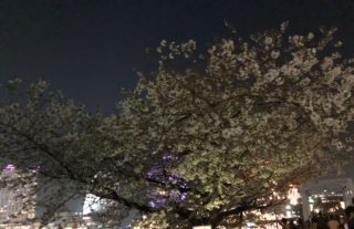 先日の出張 東京横浜へ